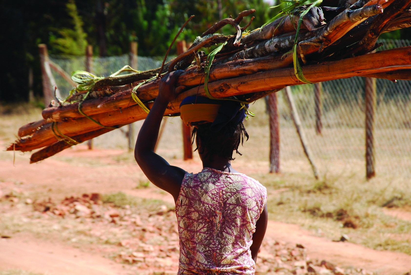 An African woman carrying a load of wood - Tanzania